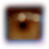 magenta-eye